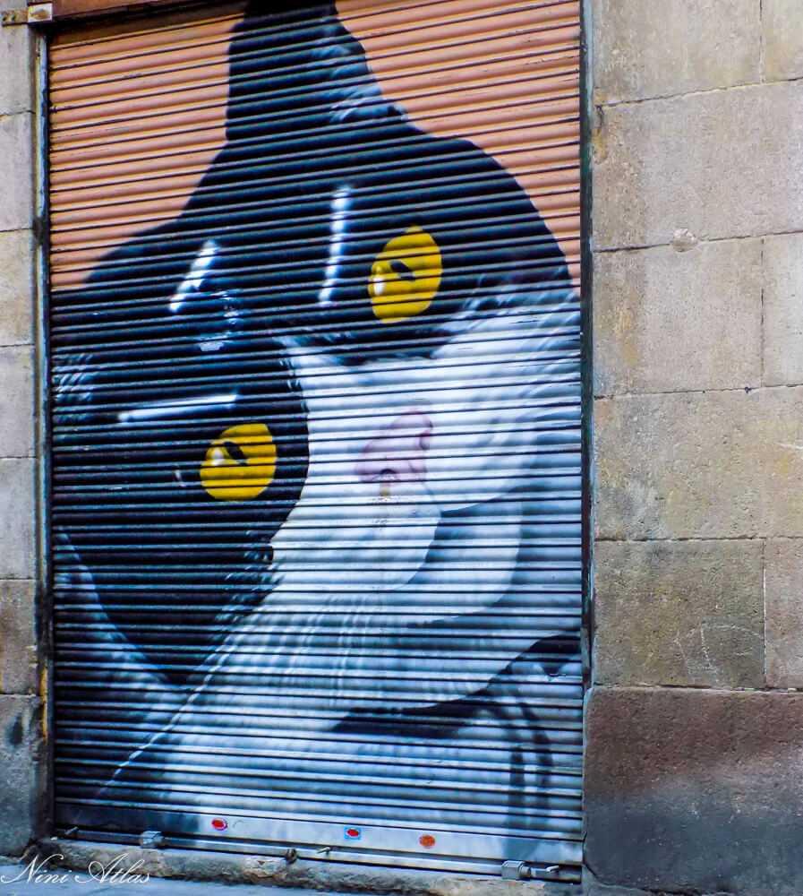 חתול גרפיטי