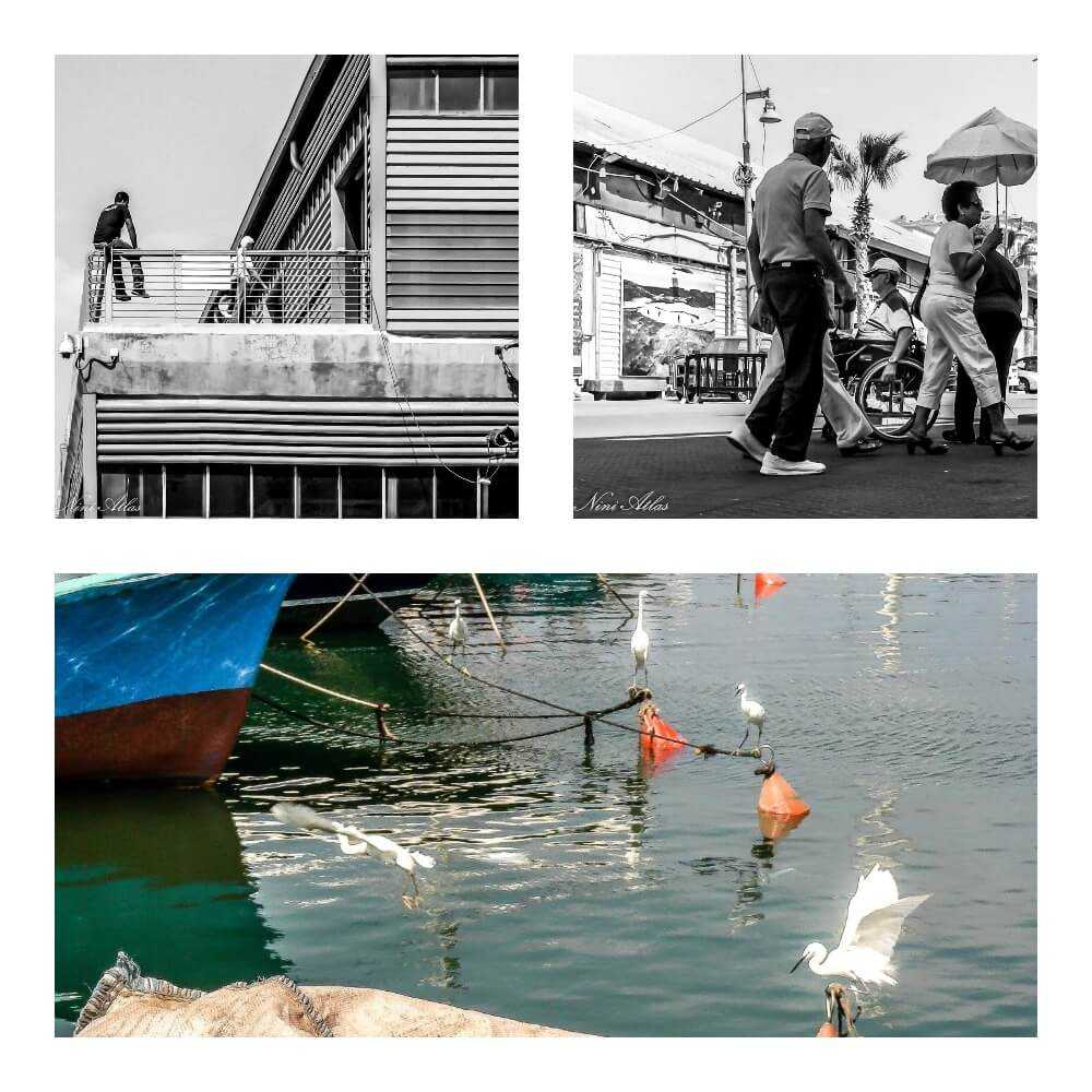 יפו - סביבת הפסטיבל הבינלאומי לצילום PHOTO IS:RAEL