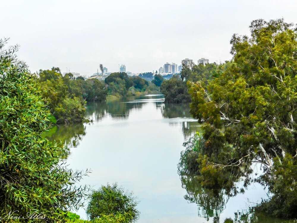 תצפית אל אגם הנקיק בראשון לציון