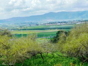 עמק יזרעאל