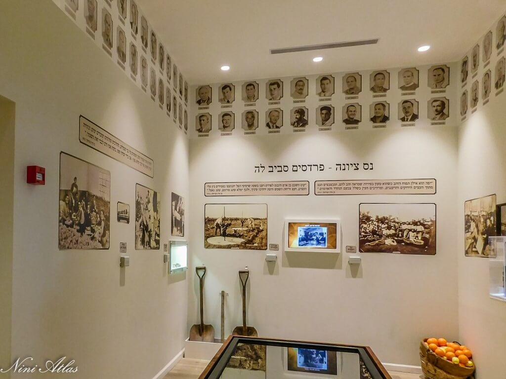 מוזיאון נס ציונה (7) (Medium)