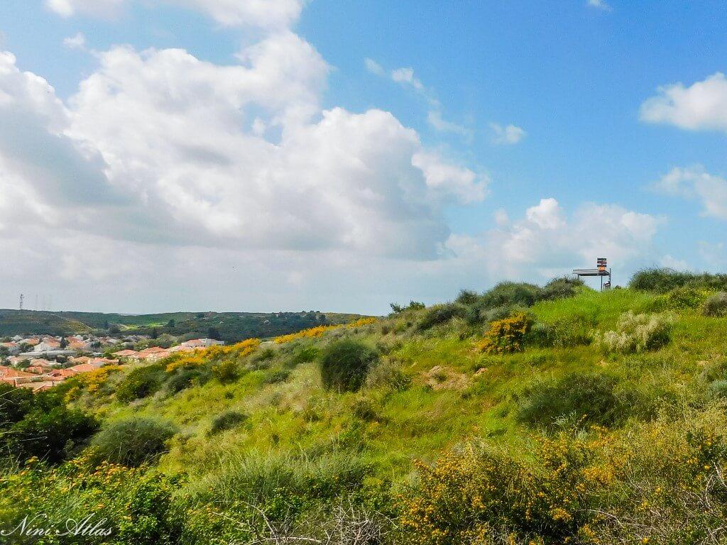 מצפה גדוד הפרשים ונופים (6) (Medium)