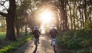 רכיבה על אופניים בטיול משפחתי