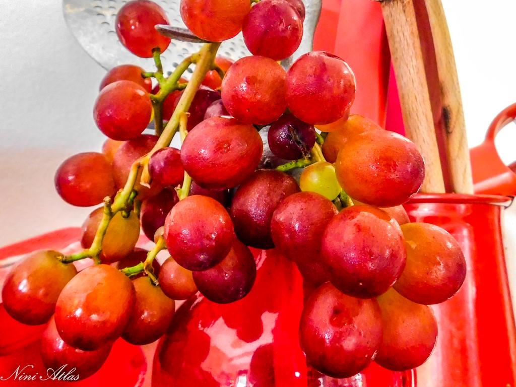 פרי הגפן