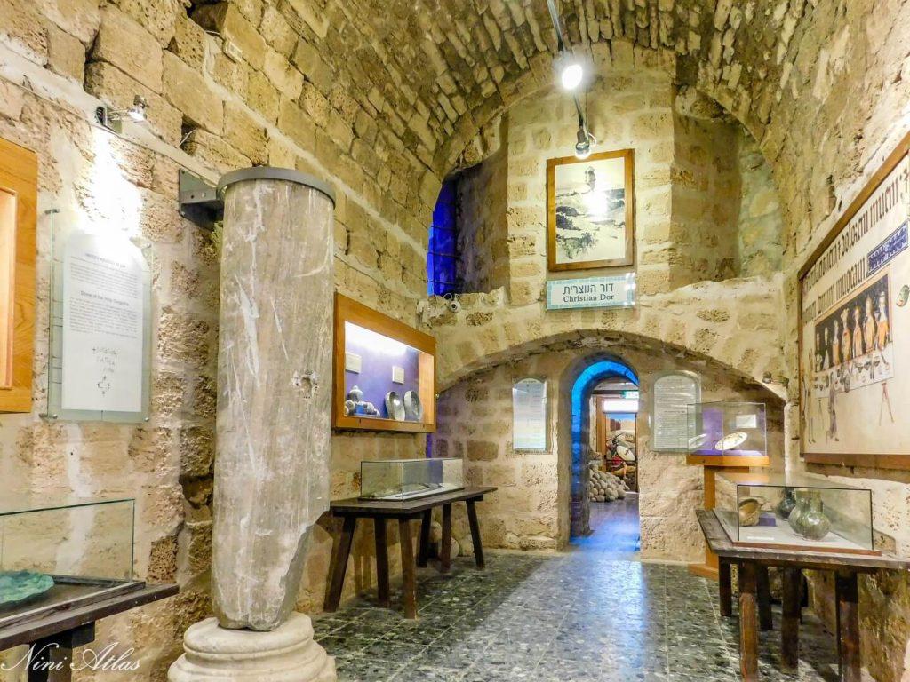דור הנוצרית במוזיאון הממזגה