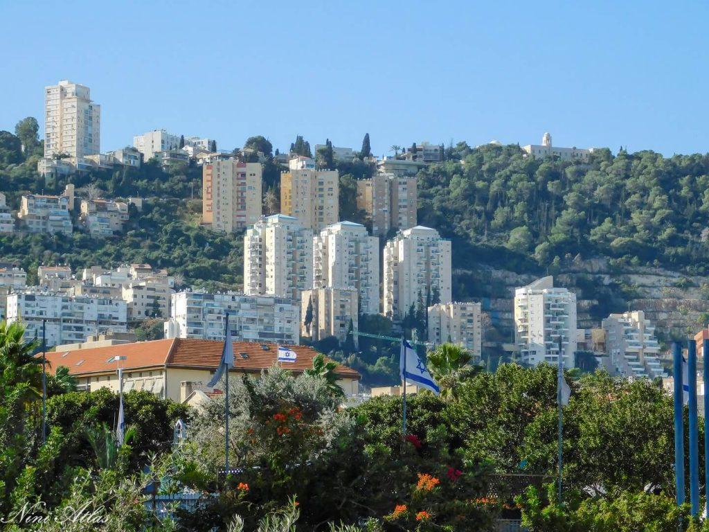 נוף חיפה