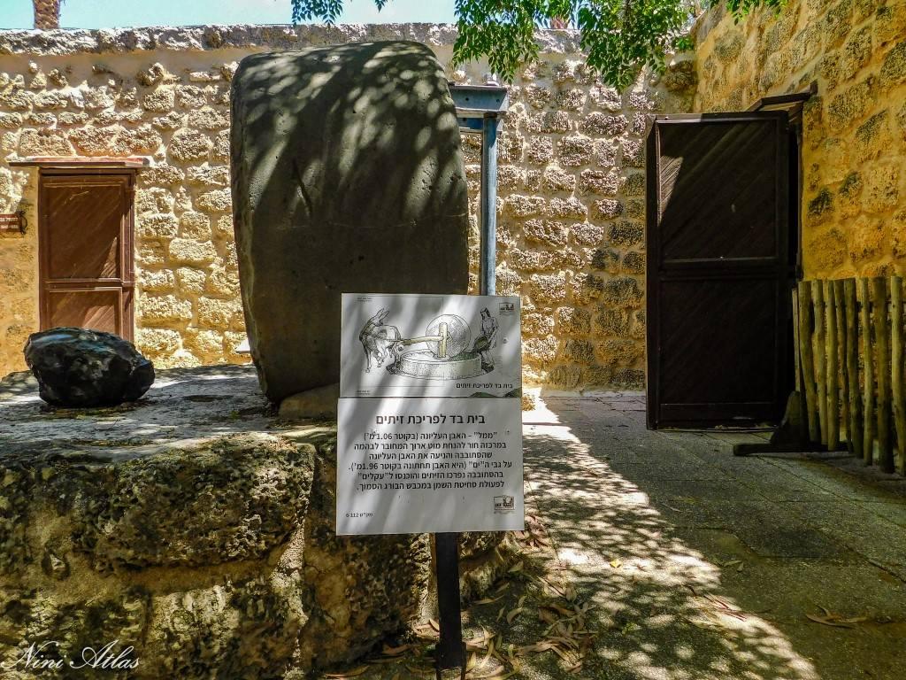 חצר מוזיאון החאן חדרה