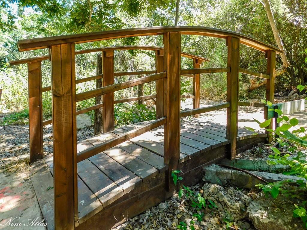 הגן הבוטני גן הטבע אבו כביר