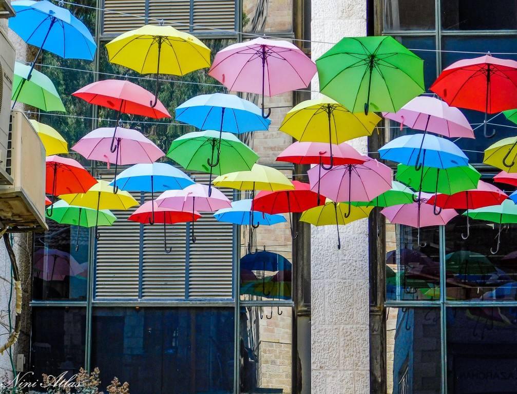 השראה ממטריות פורטוגל