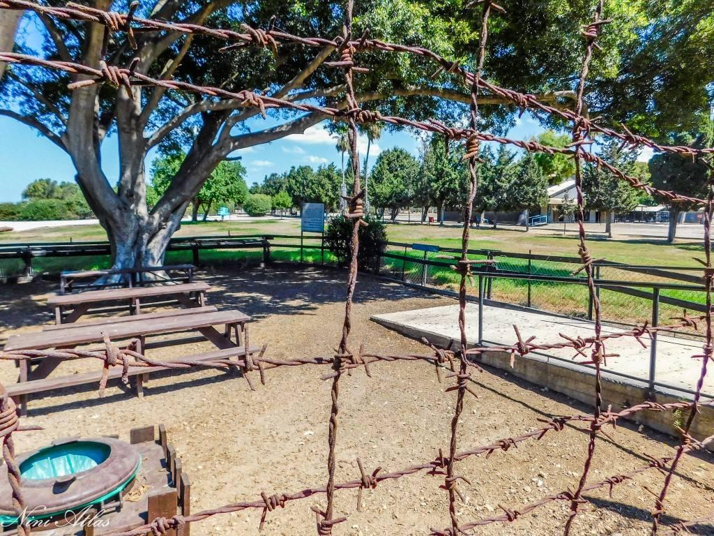 גדר תיל סביב מחנה המעצר עתלית