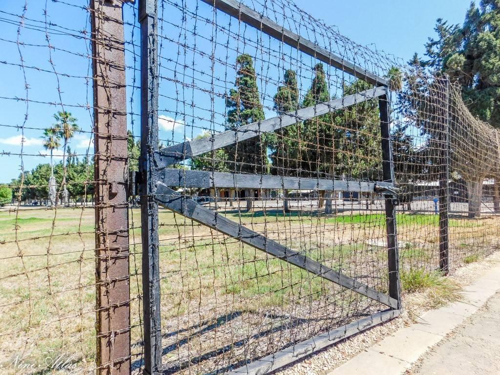 שער הכניסה מחנה המעפילים עתלית